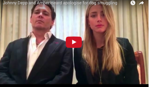 "Johnny Depp e Amber Head : ""Mea Culpa"""