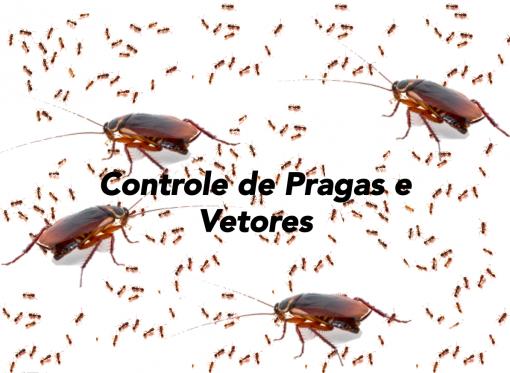 controle de pragas e vetores